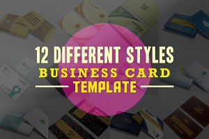 12 Different styles Business Card