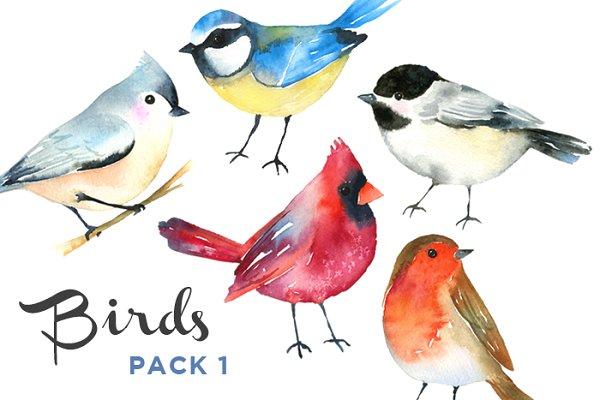 Winter Birds Watercolor Pack - 1