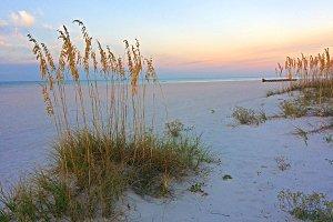 Morning beach and sea oats