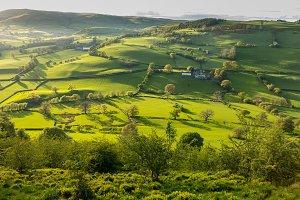 Verdant welsh farm valley