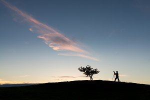 Silhouette of photographer and tree