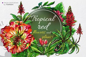 Red vector tropical flowers