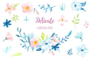 Watercolor Clipart Delicate
