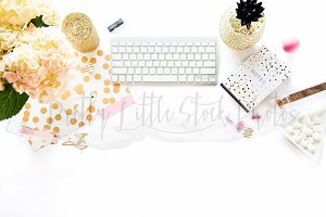 #103 PLSP Styled Desktop Stock Photo