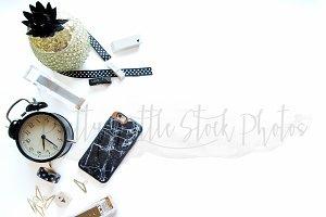 #256 PLSP Styled Desktop Stock Photo