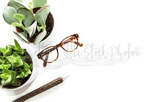 #267 PLSP Styled Desktop Stock Photo