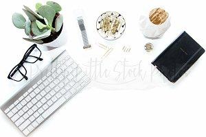 #300 PLSP Styled Desktop Stock Photo