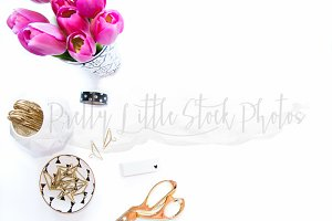 #309 PLSP Styled Desktop Stock Photo
