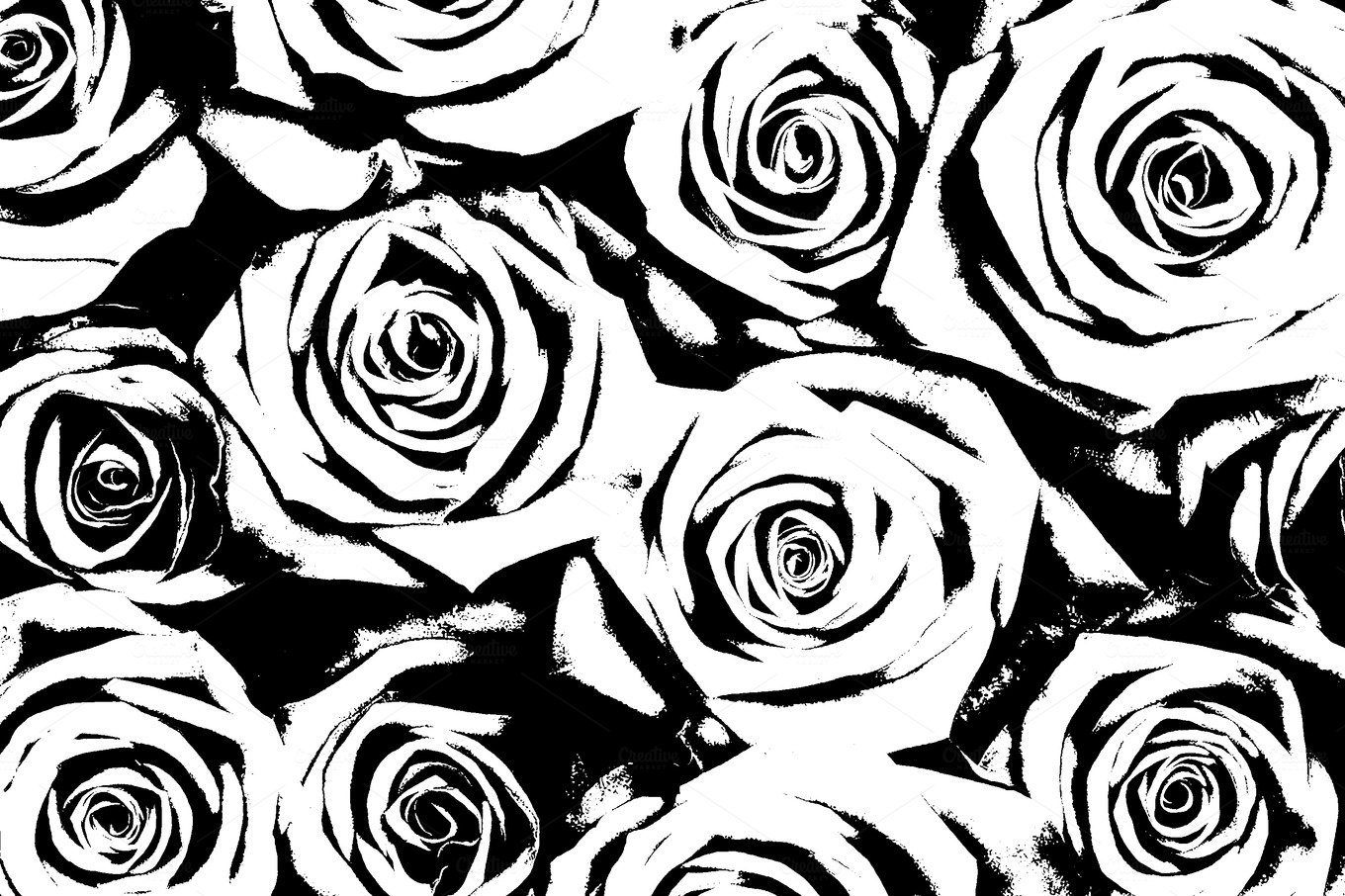 Rose Black And White Background Abstract Photos Creative Market