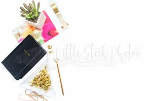 #335 PLSP Styled Desktop Stock Photo