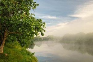 Misty morning on the riverbank