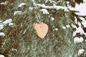 Heart on the Tree at Snowy Weather