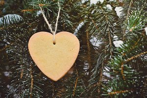 Cake Heart at the Evergreen Tree