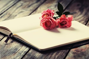 1. Elegant open book with pink roses