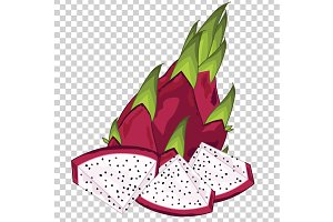 Dragon Fruit Isolated, Vector.