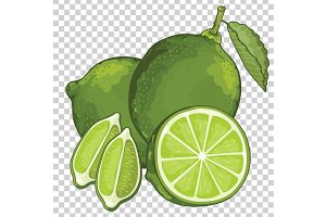 Lime Isolated, Vector.