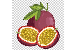 Passion Fruit Isolated, Vector.