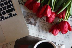 Tulips & coffee