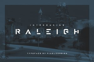 Raleigh - Premium Font + Alternate