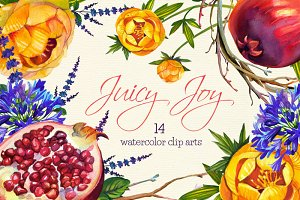 Juciy Joy- 14 watercolor clip arts
