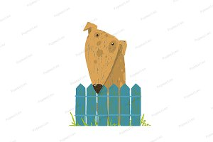 Fun Farm Cute Dog Sitting over Fence