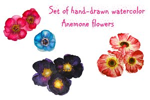 Set of hand-drawn Anemones