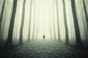 Man on path in surreal forest