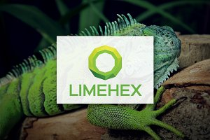 [68% off] Lime Hex - Logo Design