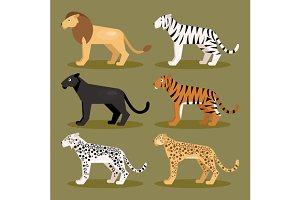 Set felines. Vector Illustration