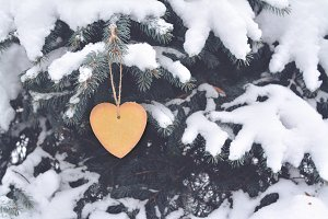 Brown Biscuit Heart on the Tree