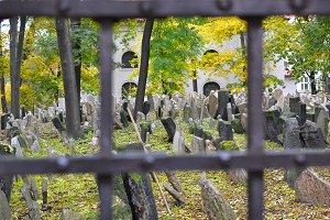 Jewish cementery Prague