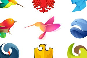 12 colorful bird icons