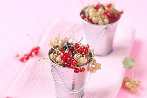 Red, White and Black Currants