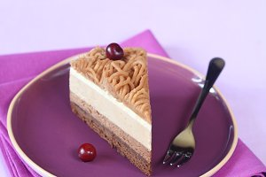 Chestnut Multi-Layered Mousse Cake