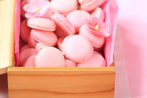 Pink Macaron Shells