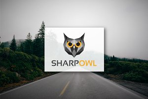 [68% off] Sharp Owl - Geometric Logo