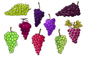 Bunches of green and red grapes