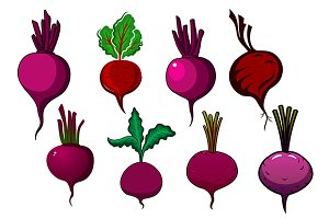Purple beets vegetables