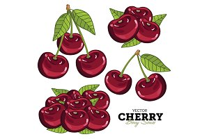 Cherry Set, Vector.