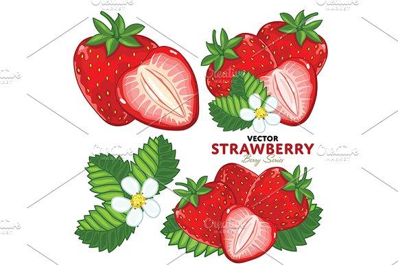 Strawberry Set, Vector.