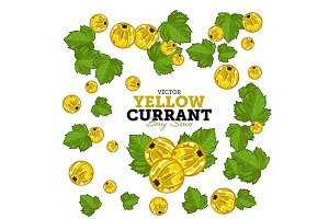 Currant Set, Vector.