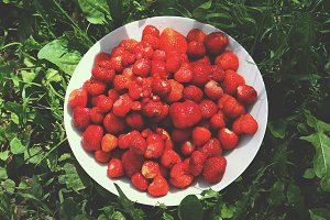 Fresh ripe forest strawberry