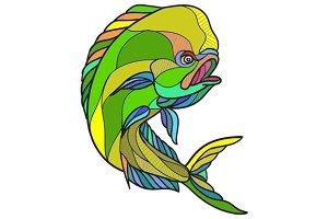 Mahi-Mahi Dorado Dolphin Fish
