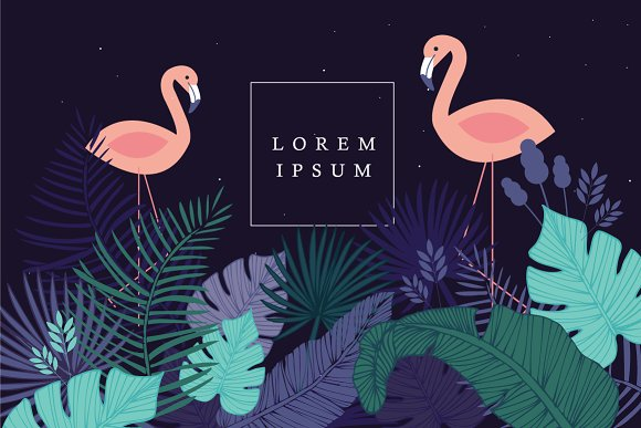 tropical flamingo template vector illustrations creative market
