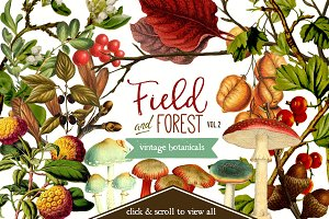 Field & Forest Vintage Botanicals #2