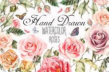Hand drawn watercolor roses