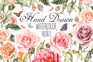 Hand drawn watercolor roses