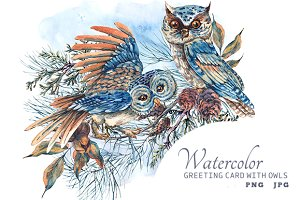 Watercolor owls and spruce