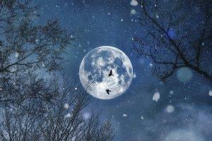 Full moon night of snow
