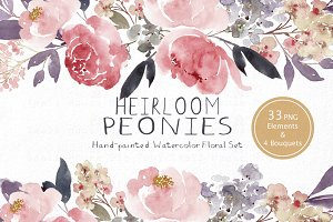 Heirloom Peonies - Watercolor Floral
